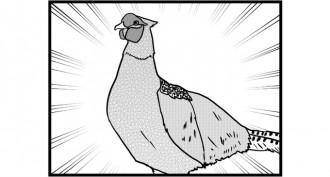第385話 女流雀士と鳥