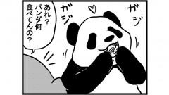 690女流雀士とパンダ②