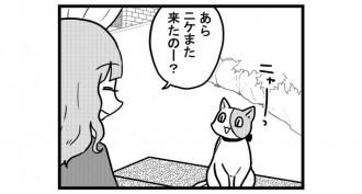 第801話 女流雀士とさすらい猫