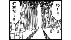 868女流雀士と竹林